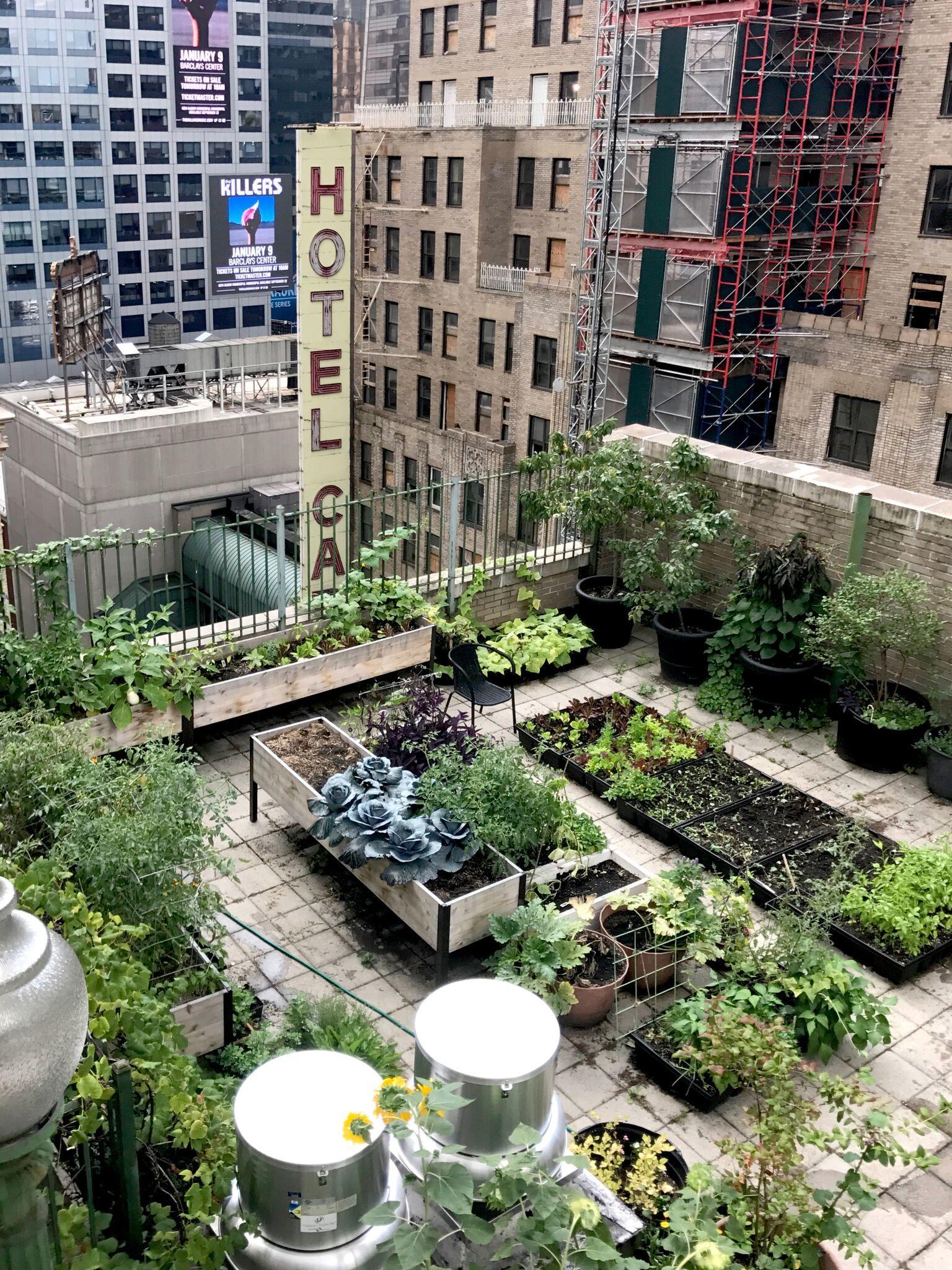Patrick Bonck Times Square Tenant Garden 3 Corrected Preview